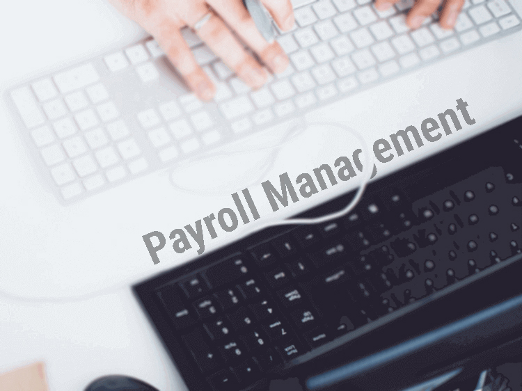 How Payroll Systems work