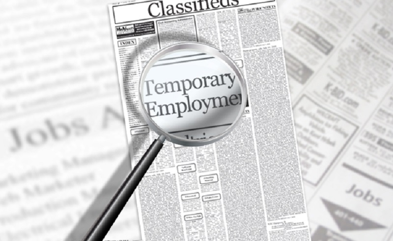 Professional temporary employment services in Vietnam