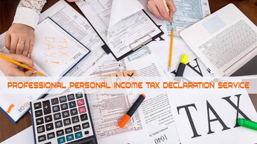 Professional Personal Income Tax declaration service